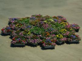 Украшаем огород