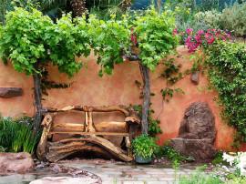 Рутарий в саду своими руками