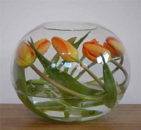 тюльпаны в аквариуме