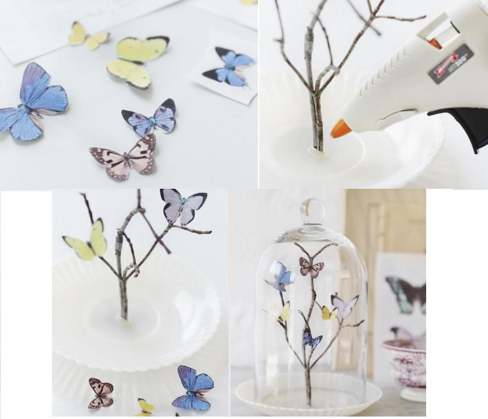 бабочки на ветке под колпаком