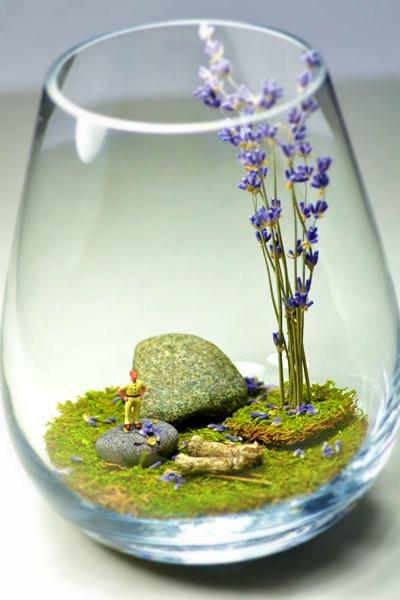 Необычный террариум для растений