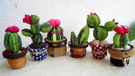 cactusdiy11