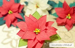Рождественник из бумаги