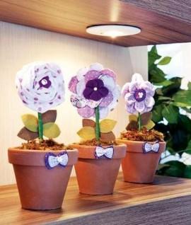 Декоративные цветы в вазонах