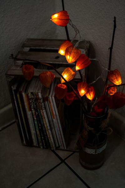 светильник из физалиса в интерьере