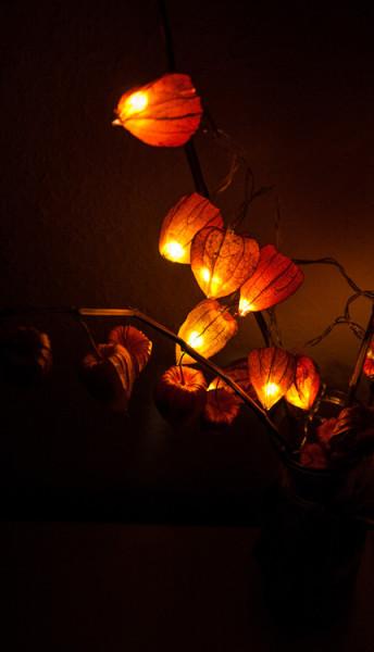 светильник из физалиса на полке