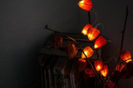 светильник из физалиса