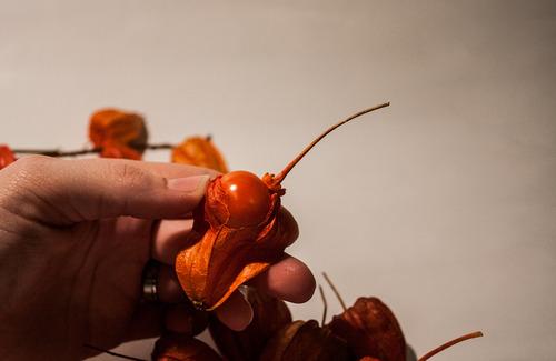 удаляем ягоду из физалиса
