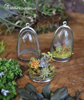 Succulent-Terrarium-Necklaces